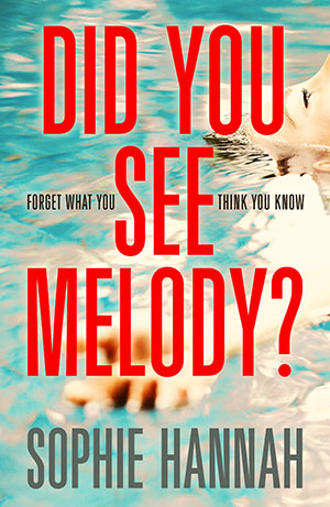 did you see melody book cover