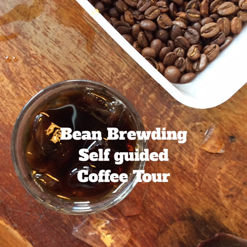 bean brewding self guided coffee tour
