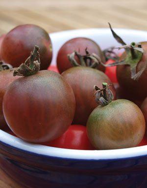 black cherry tomato