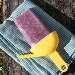 paleo blueberry ice blocks
