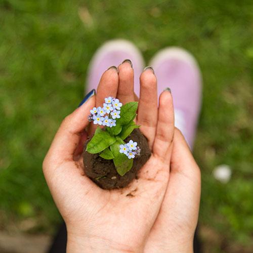 holding flowers dirt